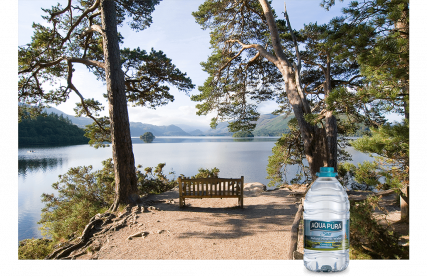 bench-under-trees-looking-out-on-a-lake-in-the-lake-district